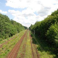 ŁÓDŹ - Widok z kładki w Parku 3-go Maja w kierunku Niciarnianej, Лодзь