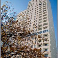 Łódź - Jesienny Manhattan - malby, Лодзь