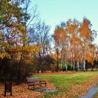 Park nad Jasieniem w jesiennych barwach, Лодзь