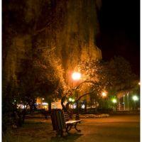 Park nocą (nocny wypad z jackiem na miasto), Радомско