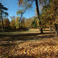 Park w Skierniewicach, okolice miejsca gdzie stał zamek (www.zamki.pl), Скерневице