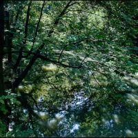 Skierniewice-Park Miejski i rzeka Skierniewka-gb-20, Скерневице