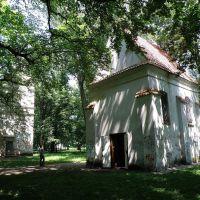 Wieża i kościół zamkowy w Białej, Биала Подласка