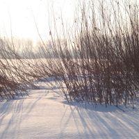 Zimą, Биала Подласка