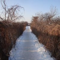 Ścieżka, Биала Подласка