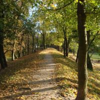 wały fosy w parku Radziwiłłów, Биала Подласка
