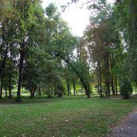 Kraśnik - park, Красник