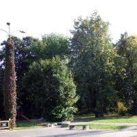 Kraśnik - park widok od ul Jagielońskiej, Красник