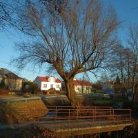 Drzewo,rzeka i most, Красник