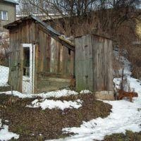 WC i pies przy ul. Szewskiej, Красник