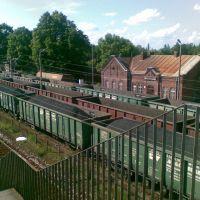 Stacja PKP Jaszczów, Лешна