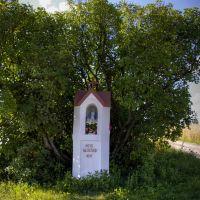 Niedaleko Milejowa kapliczka, Лешна