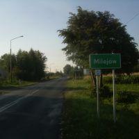 Milejów; wjazd od strony północnej, Лешна