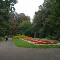 Ogród Saski, Люблин