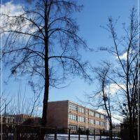 Szkoła podstawowa nr.1 w Puławach, Пулавы