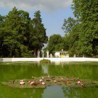 Puławy-przed pałacem, Пулавы
