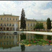 Pałac w Puławach, Пулавы