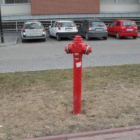 Hydrant, Свидник