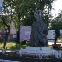 В Томашеві, Томашов Любельски