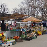 Zielony Rynek przed Wielkanocą, Томашов Любельски