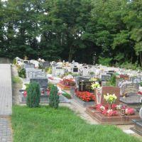 Winów w Opolu Cmentarz/Friedhof, Бржег
