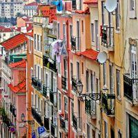 Ingreme, Лиссабон