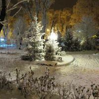 Снежный парк, Абакан