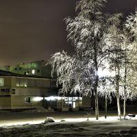 Зимний вечер, Покачи