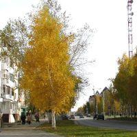 Улица Ленина. Осень., Урай