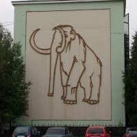 офис мамонта, Пыть-Ях