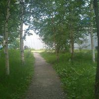 Скверик возле старого стационара Центральной горбольницы, Пыть-Ях