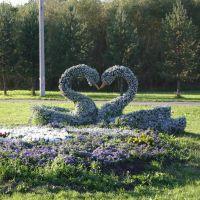 Скульптура вертикального озеленения «Влюблённые лебеди», Пыть-Ях