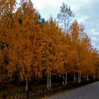 Осенью на бульваре., Игрим
