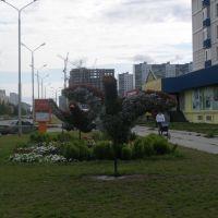 Птицы из трав и цветов ул. Ленина (лето 2008), Нижневартовск