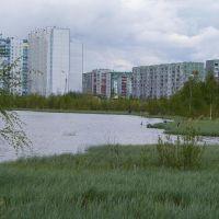 Озеро Комсомольское.г.Нижневартовск, Нижневартовск