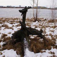 """""""Козлик"""" c Комсомольского озера, Нижневартовск"""