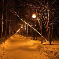 *** Зимний вечер в Нижневартовске ***, Нижневартовск
