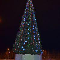 новогодняя елка, Мегион