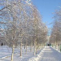 Зимний парк Излучинск, Излучинск