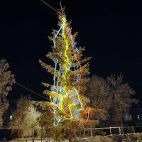 Ёлка-модерн :) ~SAG~, Ханты-Мансийск