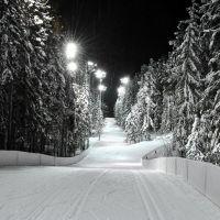 Ночь, зимний лес: светло как днем, гуляем! Сказочно!, Ханты-Мансийск