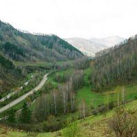 Вид на с. Пролетарка, Алтайский