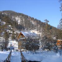 12 км за с.Алтайское, Алтайский