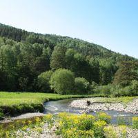 Горная речка, Алтайский