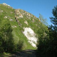 Дорога к роднику, Алтайский