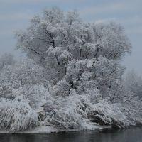 зима, Алтайский