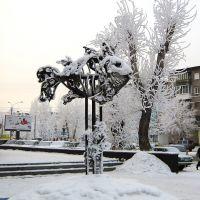 Barnaul winter, Fish, Барнаул