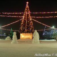 Бийск: New Year 2011, Бийск