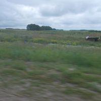 На кромке поля., Боровлянка