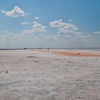 Озеро Бурлинское. Солончак., Бурсоль